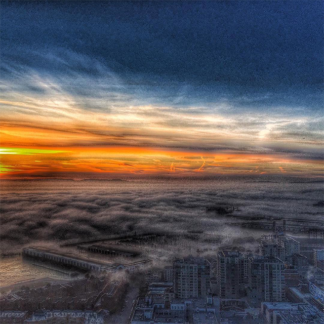 What a way to wake up! Fog engulfing the bay and ships!! Loving our new place! Thanks for sharing, @safariartist!